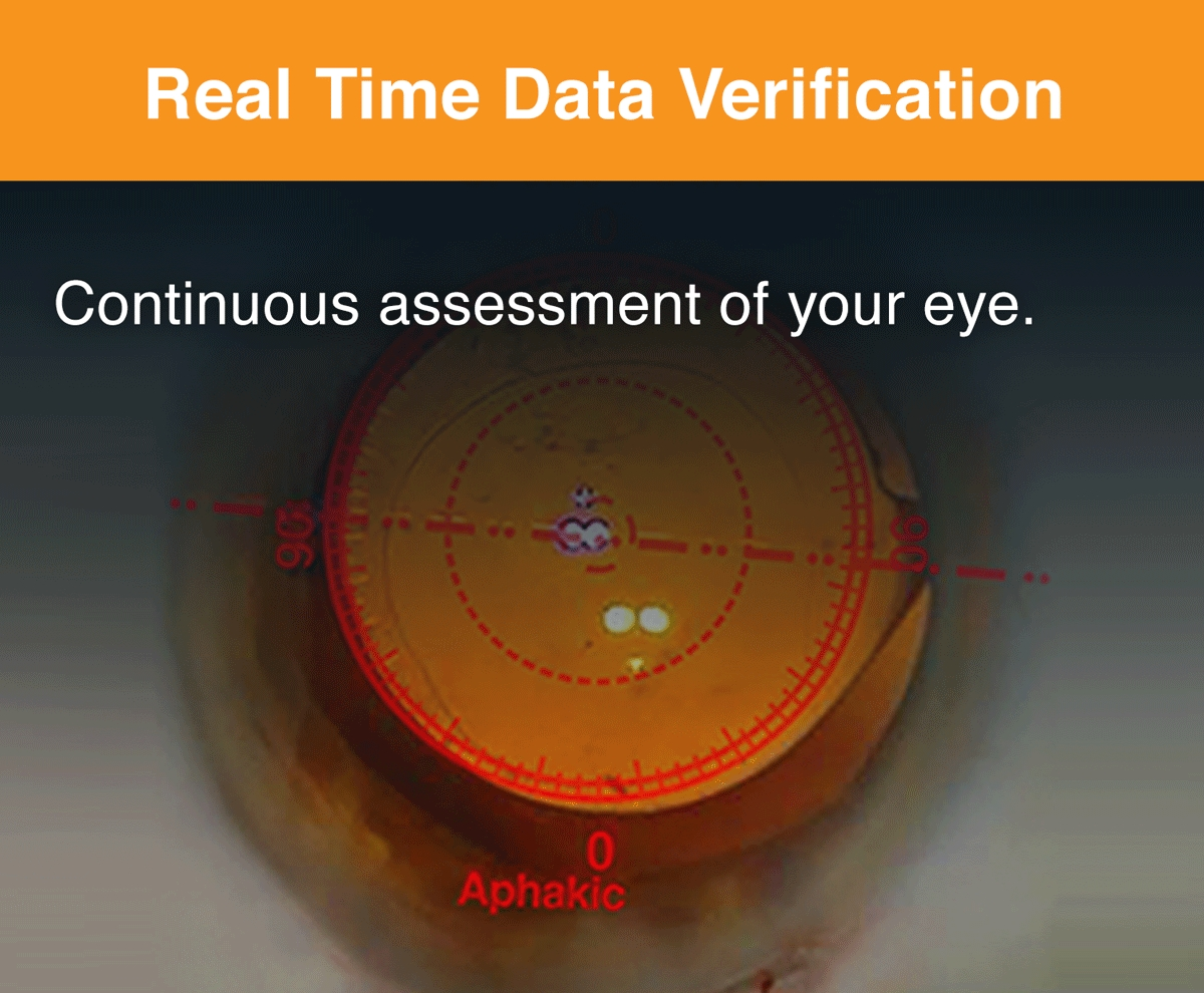 Real time data verification